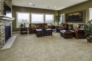 22 Walkout Level Family Room